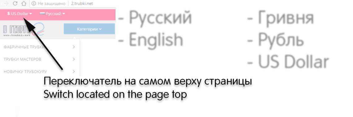 Switch English